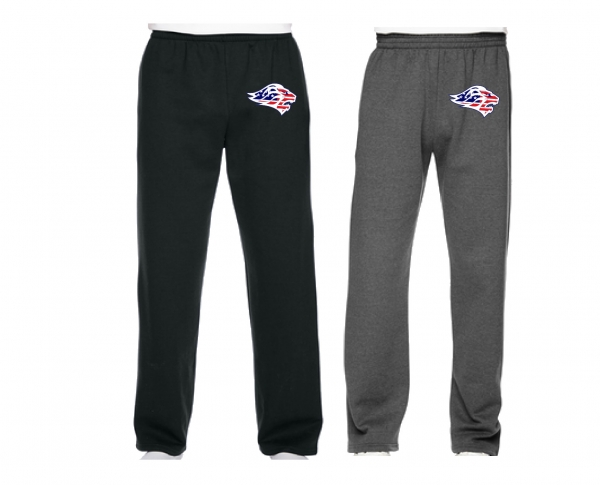 LIONS STARS & STRIPES  OFFICIAL TEAM FLEECE SWEATPANTS by PACER