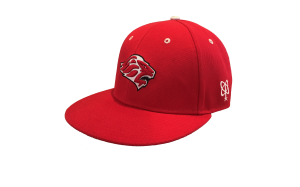 LIONS 10th Anniversary HOME SNAP-BACK CAP  by PACER